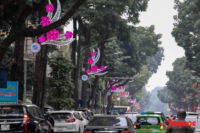Hà Nội làm heo khổng lồ bằng cây xanh đón Tết Kỷ Hợi 2019 - Ảnh 2.