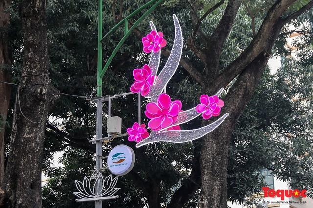 Hà Nội làm heo khổng lồ bằng cây xanh đón Tết Kỷ Hợi 2019 - Ảnh 3.