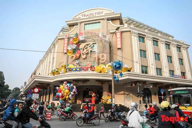 Hà Nội làm heo khổng lồ bằng cây xanh đón Tết Kỷ Hợi 2019 - Ảnh 17.