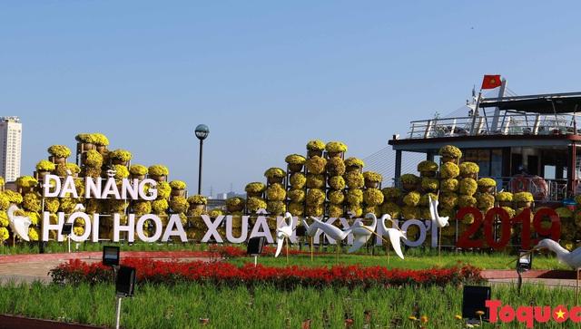 Người dân và du khách mê mẩn đường hoa Đà Nẵng Tết Kỷ Hợi 2019 - Ảnh 7.