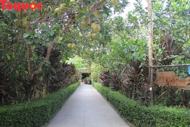 TT - Huế: Công nhận điểm du lịch đối với Nhà vườn Lương Quán - Nguyệt Biều - Ảnh 2.