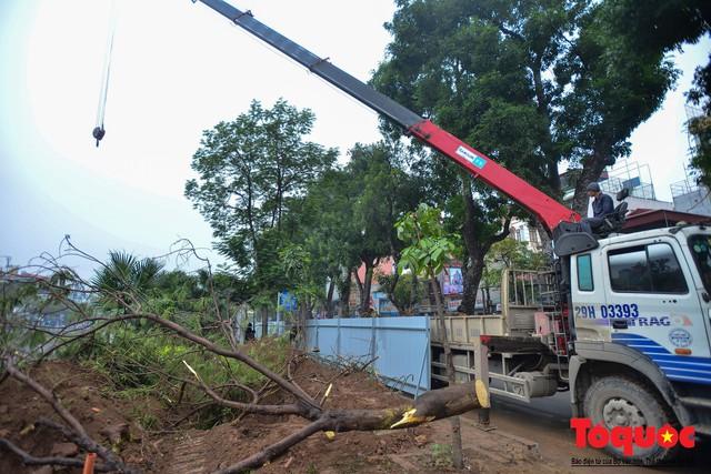 Chặt bỏ cây xanh dọc sông Tô Lịch, mở rộng mặt đường tuyến vành đai 2 - Ảnh 1.