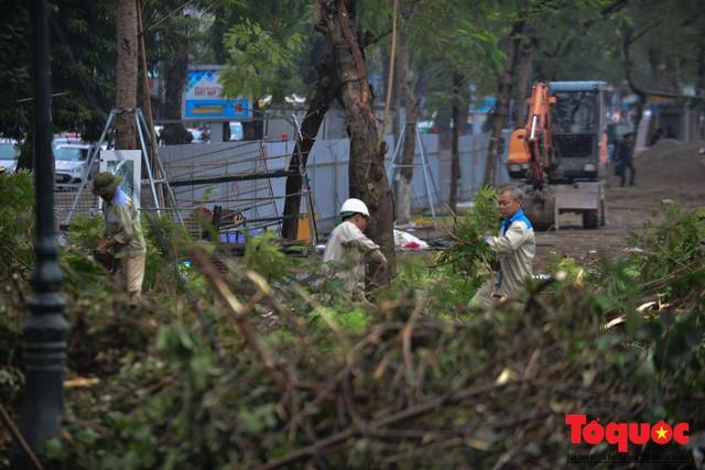 Chặt bỏ cây xanh dọc sông Tô Lịch, mở rộng mặt đường tuyến vành đai 2 - Ảnh 3.
