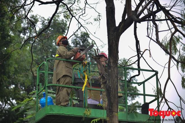 Chặt bỏ cây xanh dọc sông Tô Lịch, mở rộng mặt đường tuyến vành đai 2 - Ảnh 2.