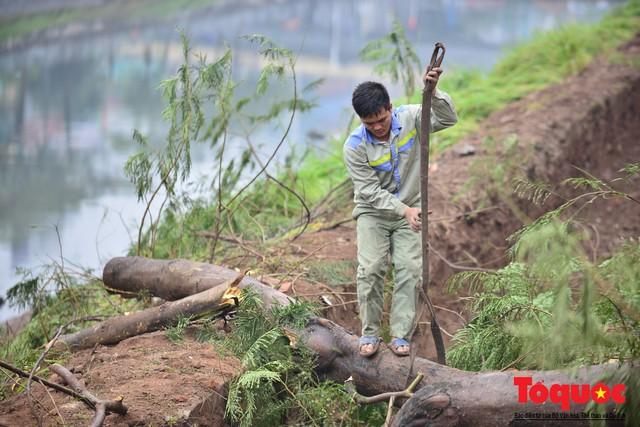 Chặt bỏ cây xanh dọc sông Tô Lịch, mở rộng mặt đường tuyến vành đai 2 - Ảnh 5.