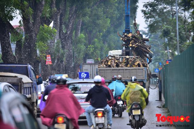 Chặt bỏ cây xanh dọc sông Tô Lịch, mở rộng mặt đường tuyến vành đai 2 - Ảnh 9.
