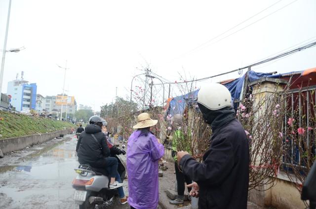 Bất chấp mưa lạnh, người Hà Nội vẫn tìm về chợ hoa Quảng Bá để chơi đào sớm - Ảnh 1.