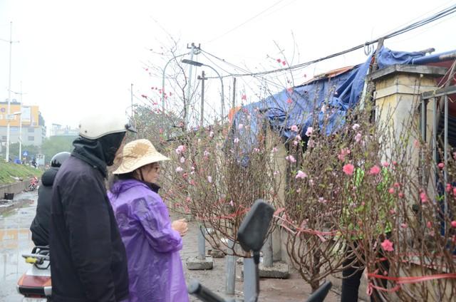 Bất chấp mưa lạnh, người Hà Nội vẫn tìm về chợ hoa Quảng Bá để chơi đào sớm - Ảnh 2.