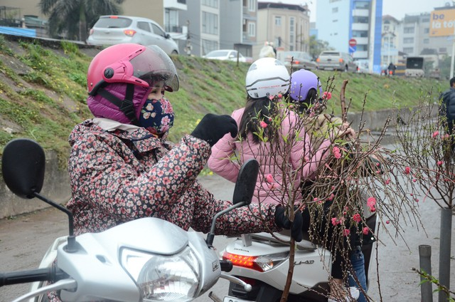 Bất chấp mưa lạnh, người Hà Nội vẫn tìm về chợ hoa Quảng Bá để chơi đào sớm - Ảnh 5.
