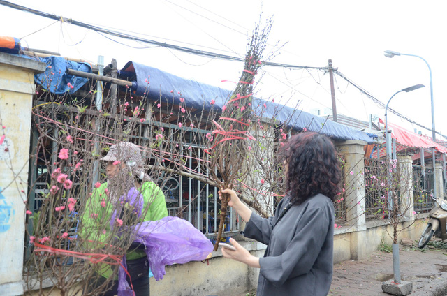 Bất chấp mưa lạnh, người Hà Nội vẫn tìm về chợ hoa Quảng Bá để chơi đào sớm - Ảnh 9.