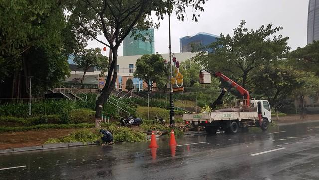 Mưa lớn, nhiều cây xanh ngã đổ ở Đà Nẵng  - Ảnh 10.