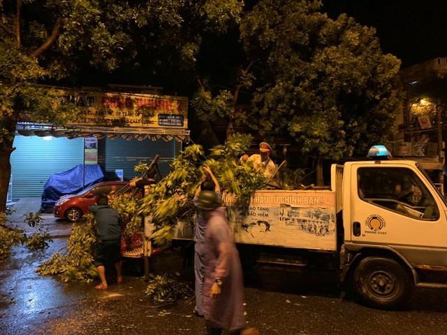 Mưa lớn, nhiều cây xanh ngã đổ ở Đà Nẵng  - Ảnh 7.