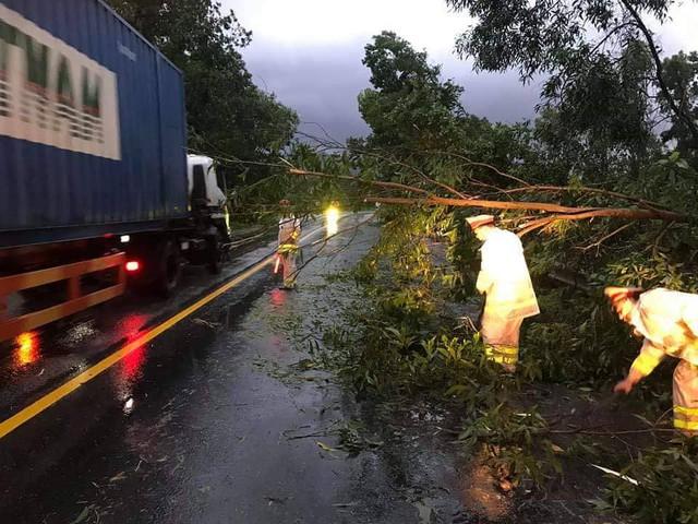 Mưa lớn, nhiều cây xanh ngã đổ ở Đà Nẵng  - Ảnh 1.