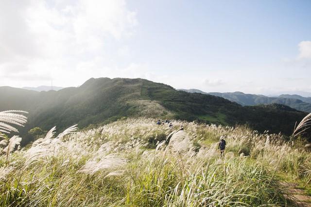 5 địa điểm với khung cảnh mùa thu không khác gì trong phim ở Đài Loan - Ảnh 1.