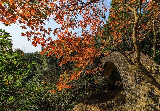 5 địa điểm với khung cảnh mùa thu không khác gì trong phim ở Đài Loan - Ảnh 2.