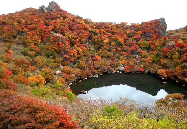 5 địa điểm với khung cảnh mùa thu không khác gì trong phim ở Đài Loan - Ảnh 6.