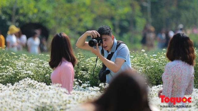 Chen chân chụp ảnh cúc họa mi nở sớm nhất Hà Nội - Ảnh 10.