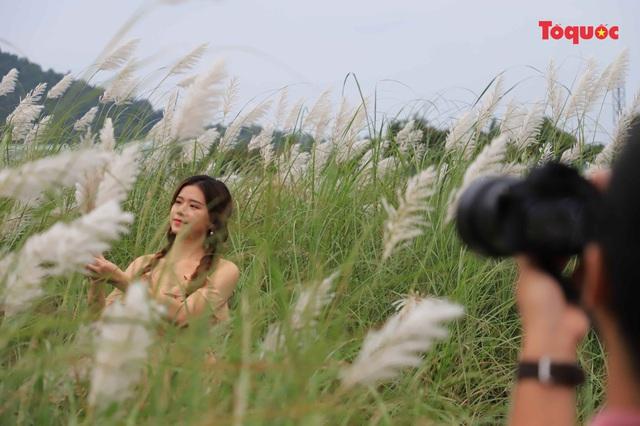 Mê mẩn mùa lau trắng ở Đà Nẵng  - Ảnh 5.