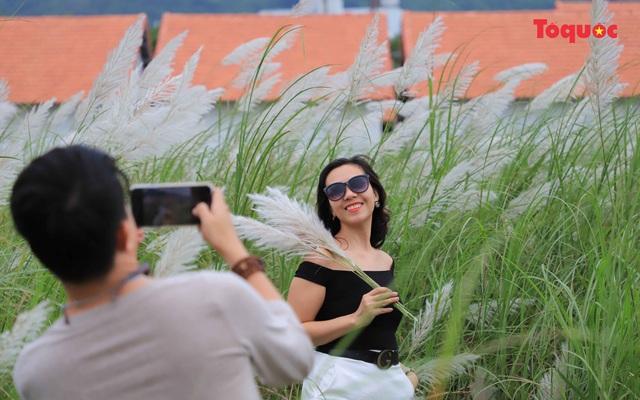 Mê mẩn mùa lau trắng ở Đà Nẵng  - Ảnh 10.