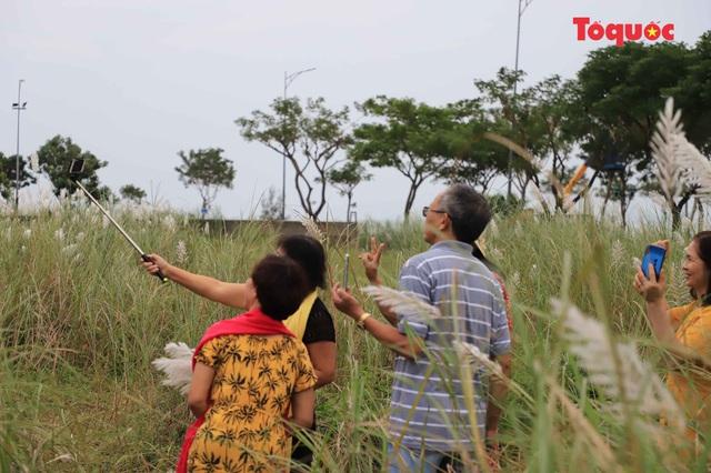 Mê mẩn mùa lau trắng ở Đà Nẵng  - Ảnh 11.