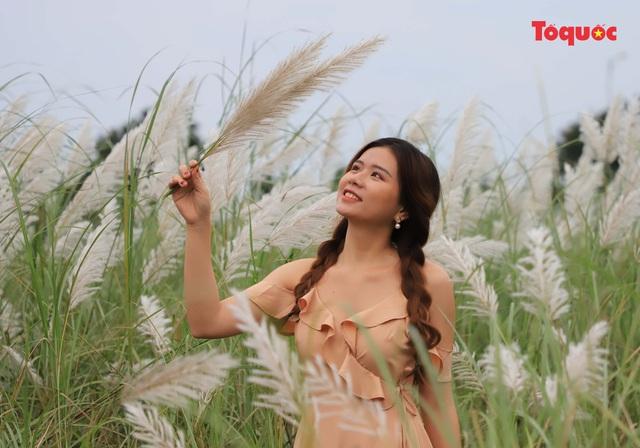 Mê mẩn mùa lau trắng ở Đà Nẵng  - Ảnh 6.