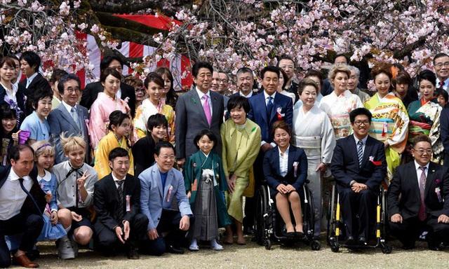 Chính phủ Nhật Bản hủy tiệc ngắm hoa anh đào 2020 - Ảnh 1.