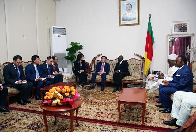 Thủ tướng Cameroon Joseph Dion Ngute đánh giá tăng trưởng của Việt Nam là kỳ tích  - Ảnh 3.