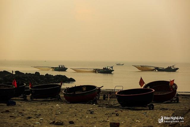 """Thử một lần """"săn"""" ruốc biển đặc sản Cửa Lò cùng ngư dân Nghệ An - Ảnh 2."""