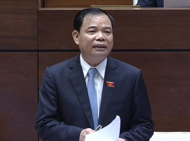 Giá cà phê thấp lẹt đẹt suốt 10 năm, Đại biểu Quốc hội đề nghị Bộ trưởng giúp nông dân - Ảnh 2.