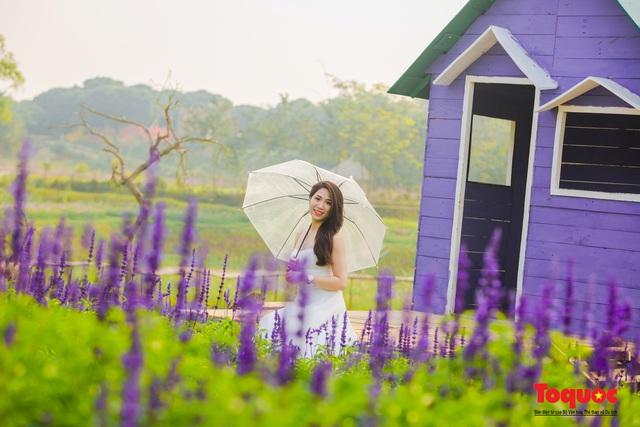 Vẻ đẹp ngỡ ngàng của cánh đồng hoa Nữ hoàng xanh như trời Âu giữa Hà Nội - Ảnh 9.