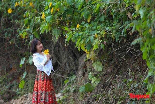 Ngập tràn sắc hoa Dã Quỳ trên cao nguyên mộng mơ - Ảnh 19.