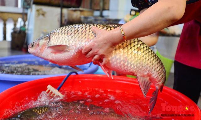 """Xếp hàng dài mua cá kho nức tiếng chợ """"nhà giàu""""  - Ảnh 5."""