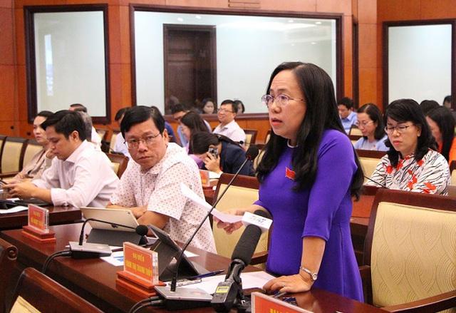 HĐND TP Hồ Chí Minh bàn giải pháp bảo tồn các di sản văn hóa - Ảnh 1.