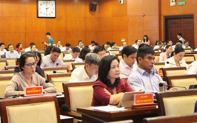 HĐND TP Hồ Chí Minh bàn giải pháp bảo tồn các di sản văn hóa - Ảnh 3.