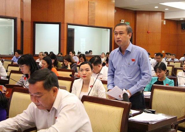 HĐND TP Hồ Chí Minh bàn giải pháp bảo tồn các di sản văn hóa - Ảnh 2.