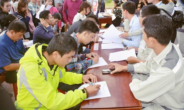 Quảng Ngãi: Mở màn tuyển dụng việc làm năm Kỷ Hợi với hơn 16 nghìn vị trí việc làm - Ảnh 1.