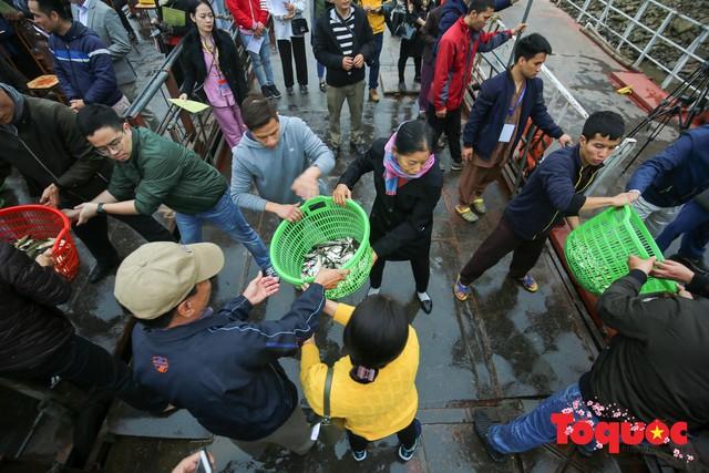 Hà Nội: Hàng vạn người chuyền tay phóng sinh gần 12 tấn cá cầu quốc thái dân an - Ảnh 8.