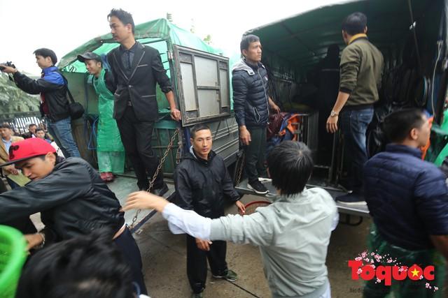 Hà Nội: Hàng vạn người chuyền tay phóng sinh gần 12 tấn cá cầu quốc thái dân an - Ảnh 4.