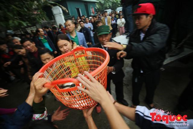 Hà Nội: Hàng vạn người chuyền tay phóng sinh gần 12 tấn cá cầu quốc thái dân an - Ảnh 6.