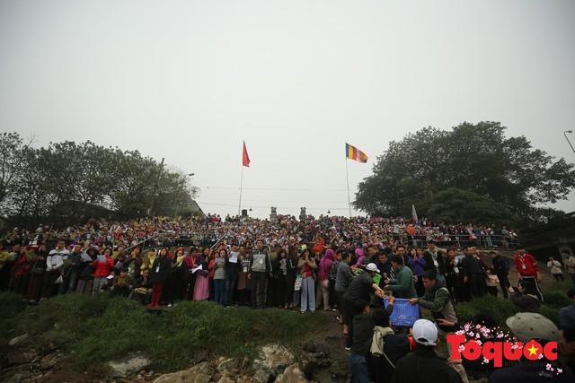 Hà Nội: Hàng vạn người chuyền tay phóng sinh gần 12 tấn cá cầu quốc thái dân an - Ảnh 2.