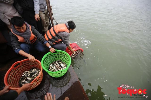 Hà Nội: Hàng vạn người chuyền tay phóng sinh gần 12 tấn cá cầu quốc thái dân an - Ảnh 9.
