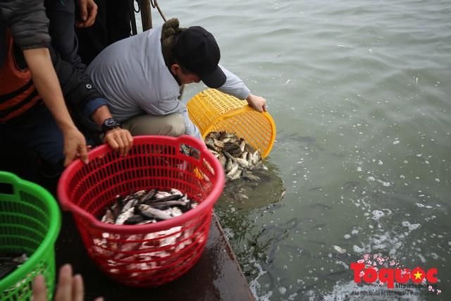 Hà Nội: Hàng vạn người chuyền tay phóng sinh gần 12 tấn cá cầu quốc thái dân an - Ảnh 10.