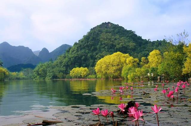 Đầu năm, du xuẩn trẩy hội chùa Hương - Ảnh 11.