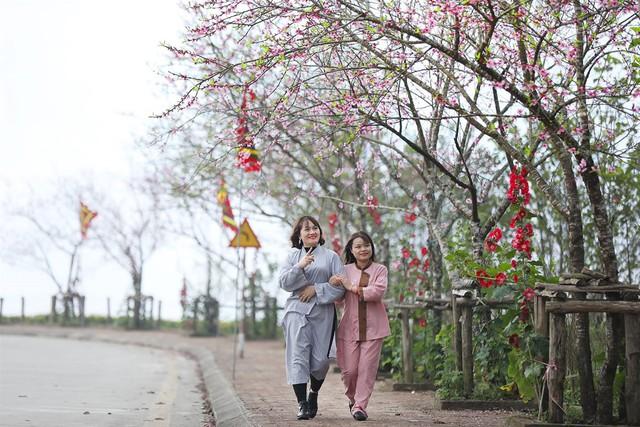 Lạc lối giữa rừng đào bung nở căng tràn nhựa sống ở Sun World Fansipan Legend - Ảnh 4.