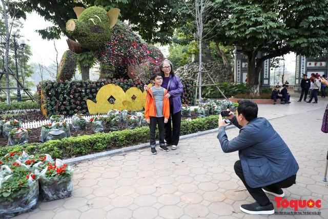 Hà Nội làm heo khổng lồ bằng cây xanh đón Tết Kỷ Hợi 2019 - Ảnh 10.