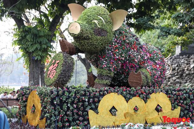 Hà Nội làm heo khổng lồ bằng cây xanh đón Tết Kỷ Hợi 2019 - Ảnh 8.
