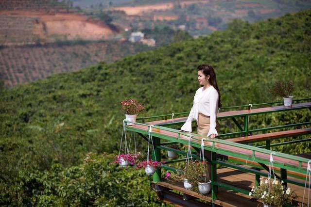 Sau thời gian dài cứu vãn hôn nhân, bà Lê Hoàng Diệp Thảo đành chấp nhận chia tay ôngĐặng Lê Nguyên Vũ - Ảnh 1.