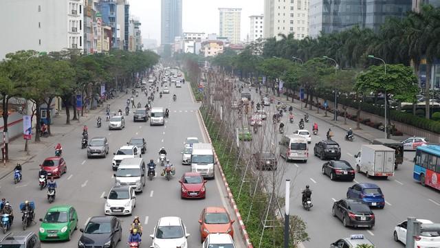 Chủ tịch TP Hà Nội lên tiếng về hàng cây phong trên phố Trần Duy Hưng trơ cành, héo úa - Ảnh 1.
