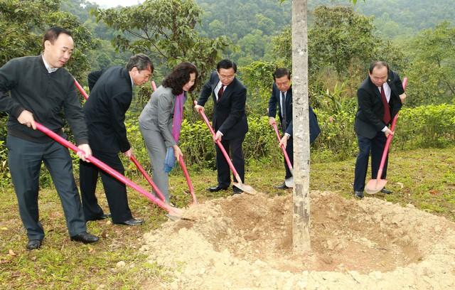 Phó Thủ tướng Vương Đình Huệ thăm khu Di tích Pác Pó  - Ảnh 2.