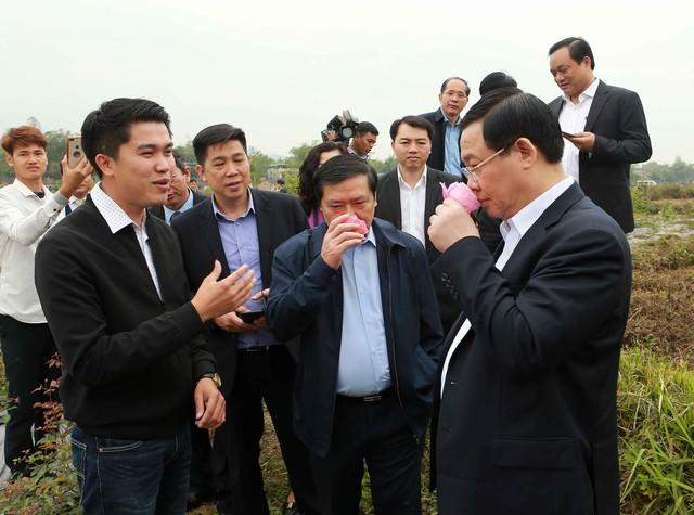Phó Thủ tướng Vương Đình Huệ thăm khu Di tích Pác Pó  - Ảnh 4.